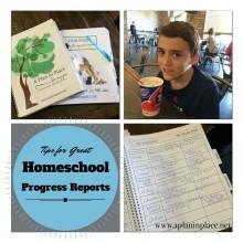 Homeschool-progres-report